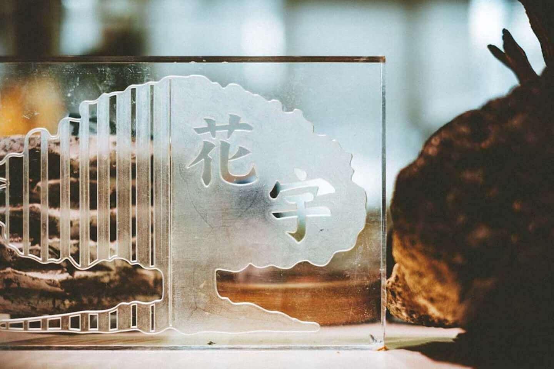 ビザールプランツのパイオニア西畠勲造にフォーカスした展示が開催中