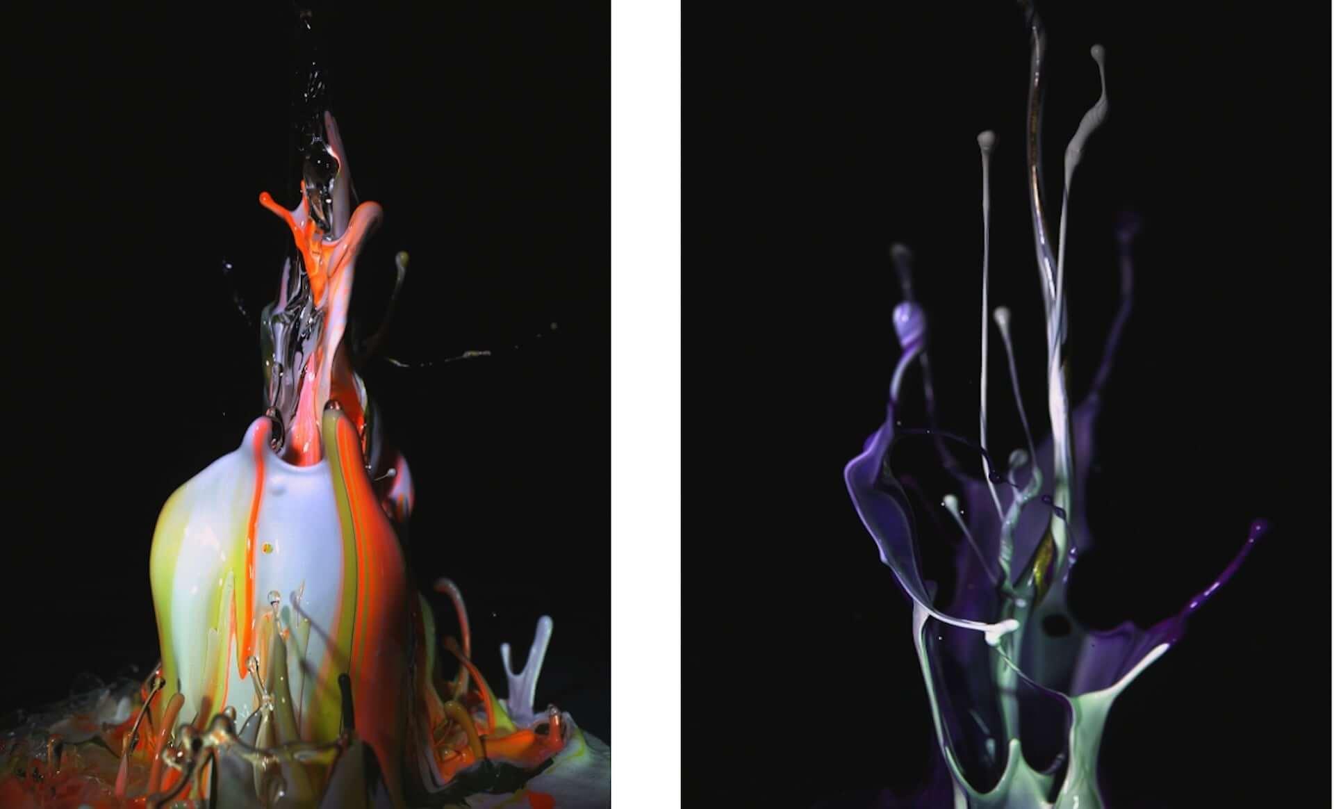 MoMAコレクションアーティスト・土佐尚子の新作NFTアート『Sound of Ikebana:音のいけばな』がオークションに登場